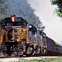 CSX 7579 Chessie, Patty, TN
