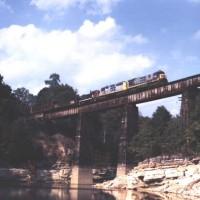 CSX Train Cove Creek, TN