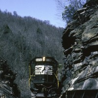 NS SD60 6656 at Roaring Branch, VA