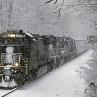 NS 8778 at Blackwood, VA