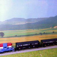 P&S train in Z scale