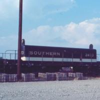 Southern slug 2473